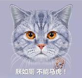 貓砂盆大號貓廁所半封閉貓咪沙盆大碼雙層貓砂盤特大號除臭貓屎盆   汪喵百貨