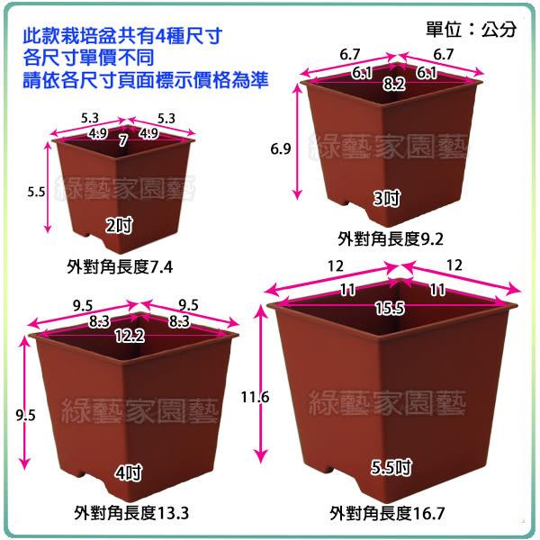 【綠藝家005-D112-RE】四方型栽培盆2吋-磚紅色(厚)