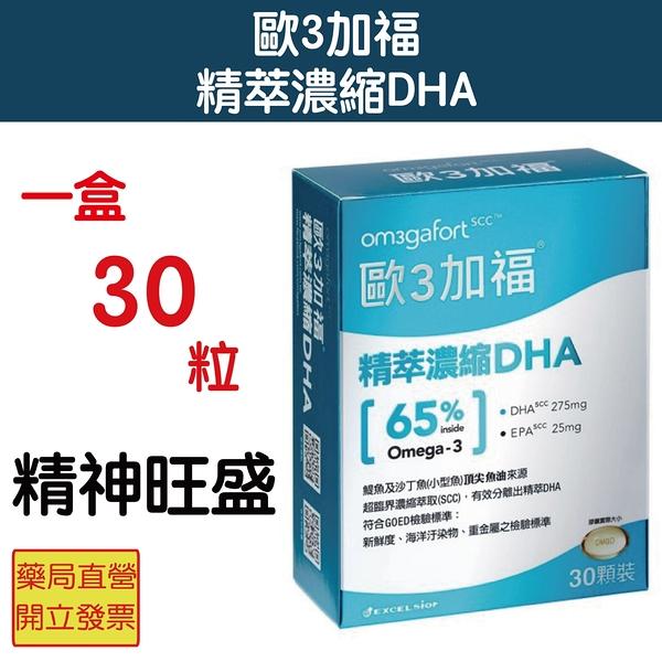 Om3gafort 歐3加福 精萃濃縮魚油DHA(60顆/盒) 精力旺盛 聚晶會神