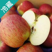 智利富士蘋果 113粒/箱【愛買冷藏】