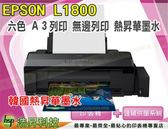 EPSON L1800 A3原廠連續供墨印表機【韓國熱昇華墨水】PlIE09-03