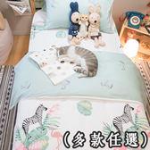 微秋風 D1雙人床包三件組  多種花色任選 台灣製造  100%純棉 棉床本舖