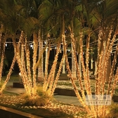 led燈條 110-220轉低壓24v燈串彩燈閃燈串燈工程防水亮化裝飾臺灣窗簾屋檐-三山一舍