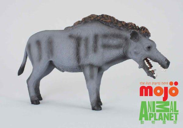 《MOJO FUN動物模型》動物星球頻道獨家授權 - 古巨豬