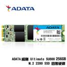ADATA威剛 Ultimate SU800 256G B M.2 2280 SATA SSD 固態硬碟