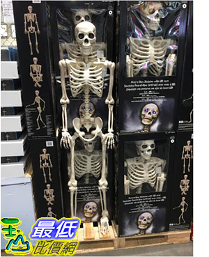 [COSCO代購] C1900318 60吋 POSE-N-STAY SKELETONW LIGHT UP EYES AND TIMER  60時萬聖節LED骷髏裝飾