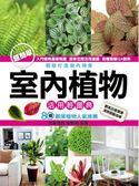 (二手書)室內植物活用輕圖典