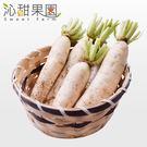 沁甜果園SSN.美濃白玉蘿蔔(5台斤/箱)*預購*﹍愛食網