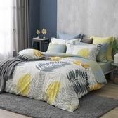 GOLDEN-TIME晨陽棕梠-精梳棉兩用被床包組(雙人)