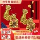 【新北現貨可自取】迷你電鍍大力麒麟臂招財貓擺件巨手肌肉手臂大胳膊粗臂劫財貓巨臂