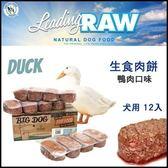 *KING WANG*【免運】BIG DOG BARF 巴夫生-犬用生食肉餅 鴨肉口味-12入=3kg