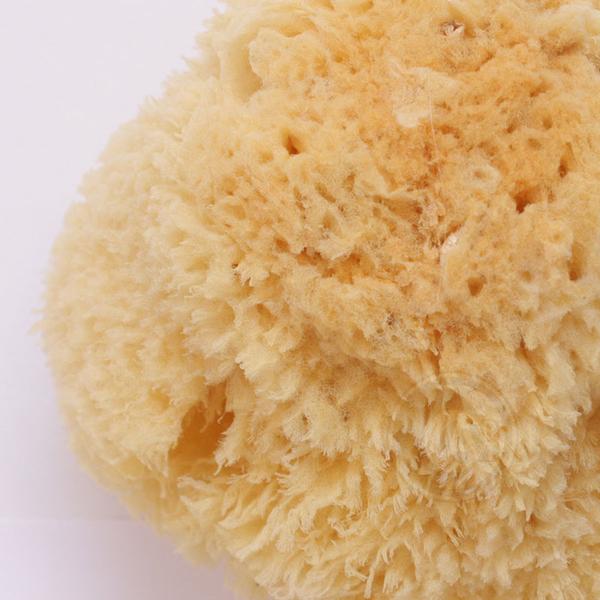 『ART小舖』STI希臘 繪畫清潔專用海綿 天然海綿 粗質 草型系列 No.23501 3.5-4英吋 單顆