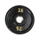 鑄鐵槓片2.5磅(槓鈴片/啞鈴片/舉重/重訓)