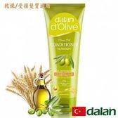 Dalan~橄欖油修護護髮素200ml/瓶(乾燥/受損髮質) ~特惠中~