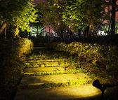 太陽能射燈戶外庭院草坪燈別墅花園插地led七彩景觀壁燈路燈超亮igo 伊衫風尚