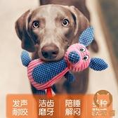 狗狗玩具發聲耐咬金毛大型犬幼犬小狗磨牙寵物玩具【宅貓醬】