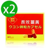 【八福台康】長效薑黃膠囊x2(20粒/盒)