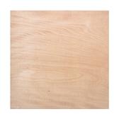 環保合板4分120x120cm