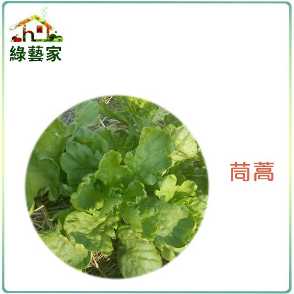 【綠藝家】大包裝A01.茼蒿種子210克 (圓葉種)