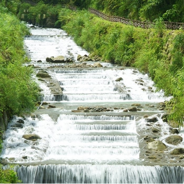 【溪頭】自然教育園區-森呼吸雙人假期(非暑假週五不加價)