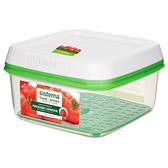 紐西蘭 Sistema 蔬果保鮮盒 2.6L