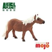 《MOJO FUN動物模型》動物星球頻道獨家授權-雪特蘭矮種馬