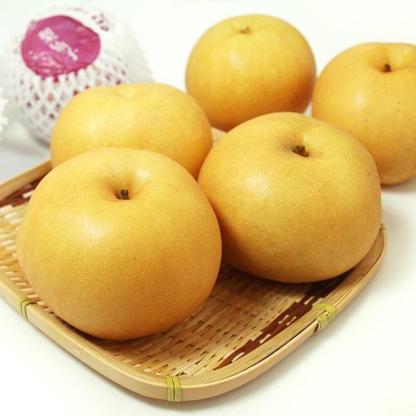 韓國進口新高梨禮盒