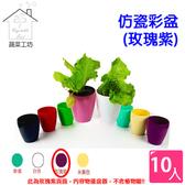 仿瓷彩盆(單個)玫瑰紫 10個/組
