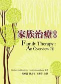 (二手書)家族治療 中文第一版 2012年