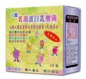 六鵬 乳鐵蛋白乳酸菌(50包/盒)x1