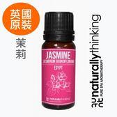 NT 茉莉原精 2ml。Jasmine Absolute。Naturally Thinking