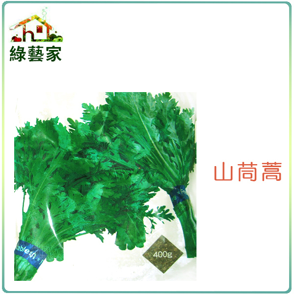 【綠藝家】A02.山茼蒿種子1500顆