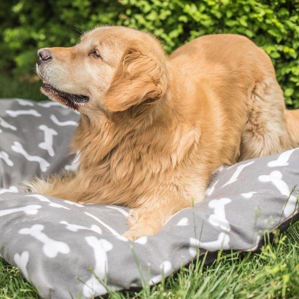 狗狗睡墊床墊子耐咬大型犬金毛泰迪狗窩貓窩小中型犬可拆洗四