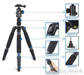 思銳A1205三腳架套裝 碳纖維單反相機旅行便攜三角架手機自拍支架CY『新佰數位屋』