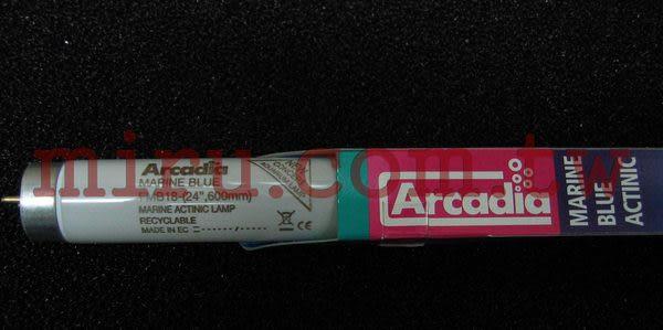 【西高地水族坊】英國阿卡迪亞Arcadia 海水長效培養燈管MARINE BLUE ACTINIC T8 FL (18w)