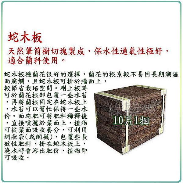 【綠藝家001-A109】6吋蛇木板10片/捆