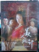 影音 S15 033  DVD 大陸劇~美人心計全40 集10 碟國語~林心如陳鍵鋒孫菲菲