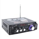快速出貨-迷妳小型功放機音箱功率放大 插卡U盤收音直流12伏110V藍芽功放