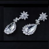耳環 925純銀 鑲鑽-細膩大方生日情人節禮物女飾品4色73hz107【時尚巴黎】