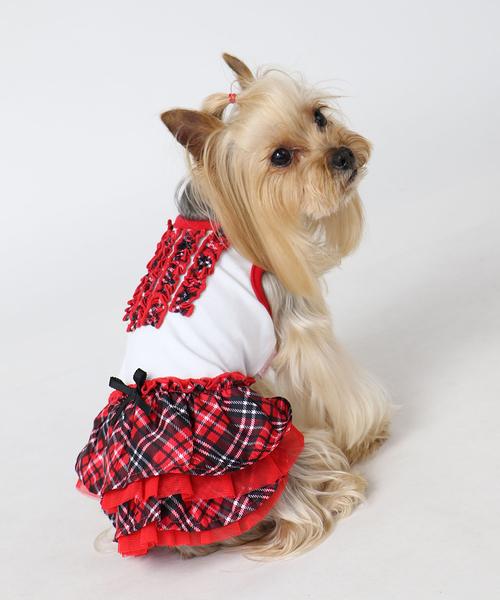 【PET PARADISE 寵物精品】Pretty Boutique 格紋千層洋裝 (3S/DSS) 狗衣服 寵物用品 寵物衣服