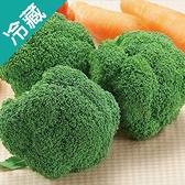 台灣青花菜1顆 (200g±5%/顆)【愛買冷藏】