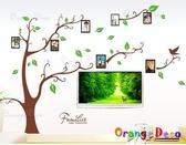 壁貼【橘果設計】相片樹 DIY組合壁貼 牆貼 壁紙室內設計 裝潢 壁貼