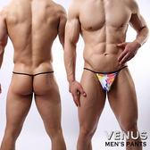 情趣用品 內褲 送潤滑液 VENUS 男性印花單丁 性感情趣 丁字褲 T071 型男必備平口內褲