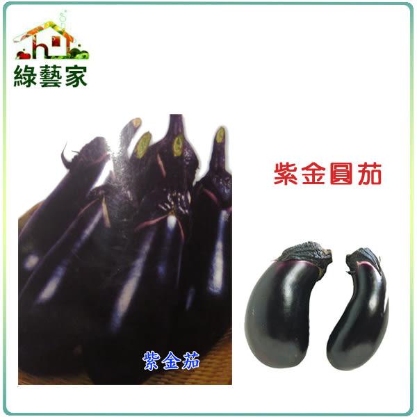 【綠藝家】大包裝G33.紫金圓茄(日本進口紫金茄)種子180顆