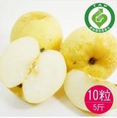(產銷履歷)竹塘黃金梨10粒共5台斤-香脆甜的水梨