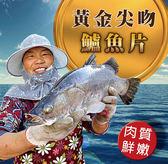【大口市集】黃金引藻尖吻鱸魚片12片(350g/片)贈北海道生食級干貝1包(5顆/包)