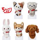 【日本正版】動物 排排坐玩偶 Chokkorisan 拍照玩偶 坐坐人偶 573132 573149 573156 573163 573170