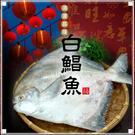 【屏聚美食】頂級野生白鯧魚X2尾免運組(...