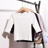 七分袖T恤 秋季中袖上衣女七分袖緊身短款純棉白色t恤針織衫修身薄款打底衫 夢藝