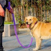 狗錬子雙色防咬八股繩金屬不銹鋼拉布拉多金毛中型大型犬狗牽引繩「青木鋪子」